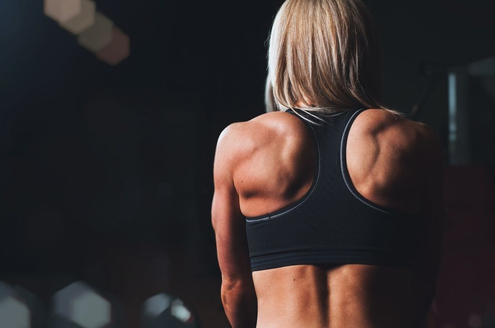 Study Finds Link Between Gut Health And Muscle Strength