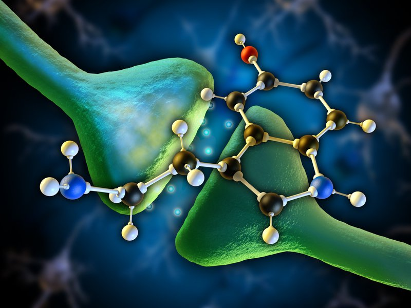 Study Finds That Big Pharma Completely Lied About Serotonin Reuptake Inhibitors (SSRI) For Depression