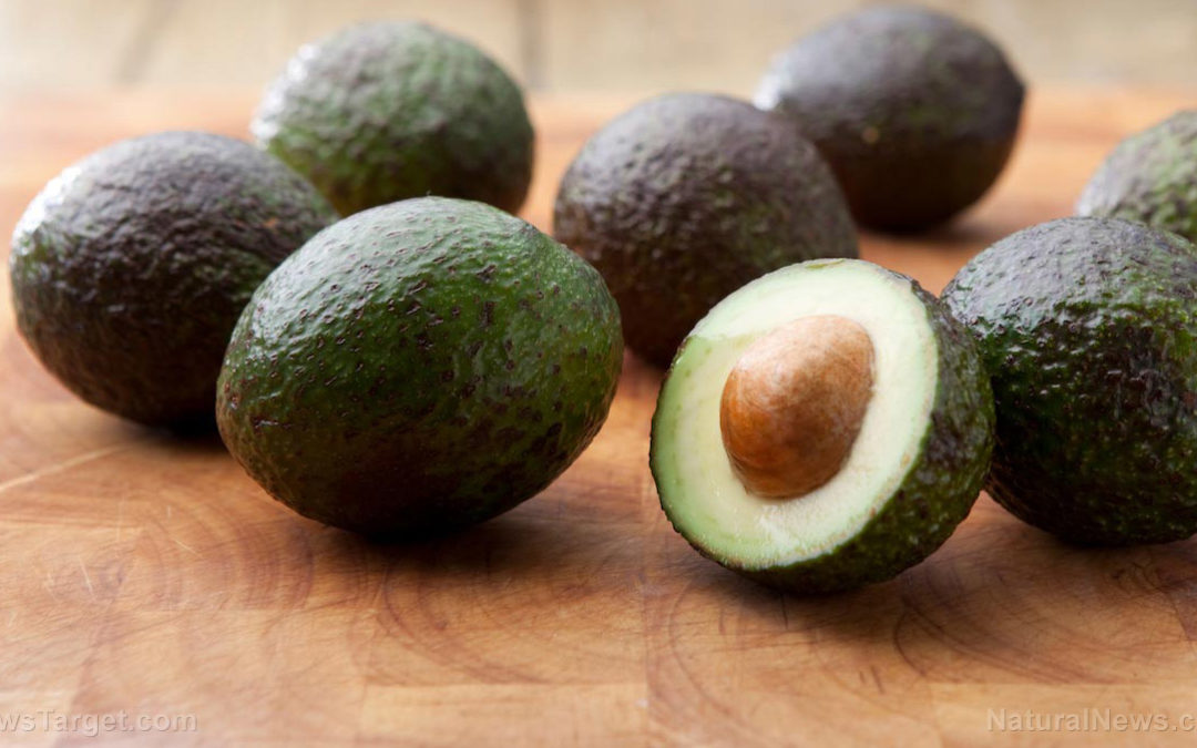Avocados are REAL superfoods with plenty of health benefits