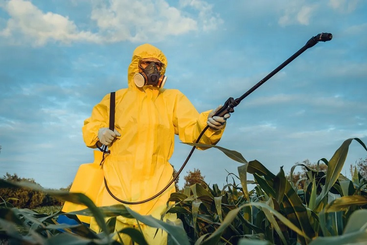 """5 Biggest Pesticide Companies Are Making Billions From """"Highly Hazardous"""" Chemicals, Investigation Finds"""