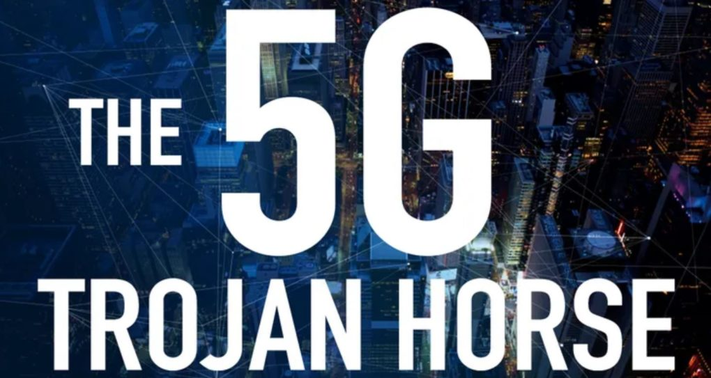 The Impact Of 5G On The Environment And Wildlife