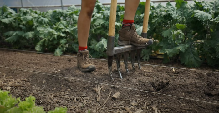How To Prepare No-Till Garden Beds For New Crop Planting (Video)