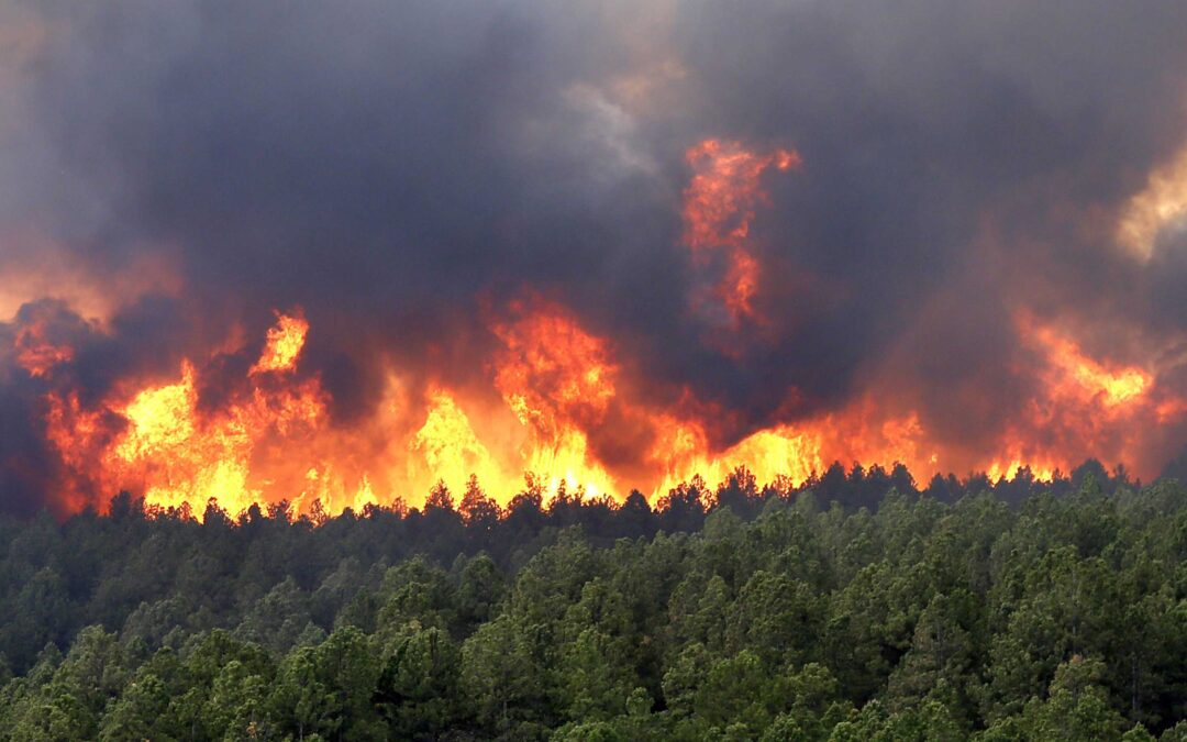 California wildfires are causing unprecedented levels of air pollution