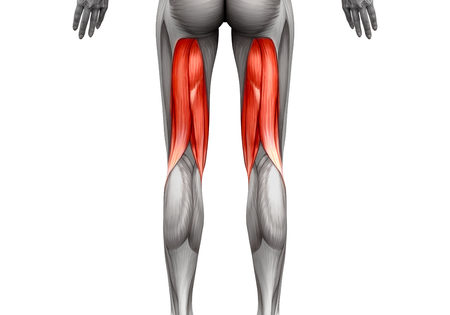 Stretching the Hamstrings – This is a fantastic video to help.
