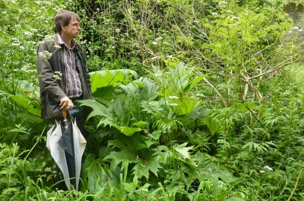 A Forest Garden With 500 Edible Plants Could Lead To A Food Secure Future