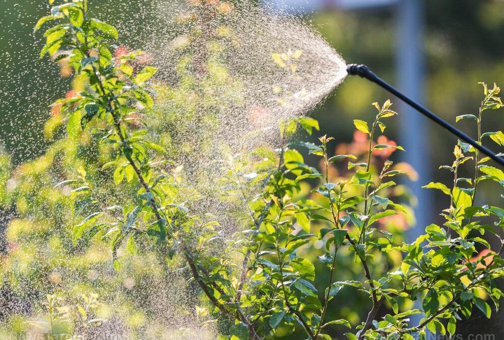 Living near pesticide-treated farms raises risk of childhood brain tumors