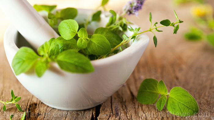 10 herbs you can use to make immunity-boosting tea