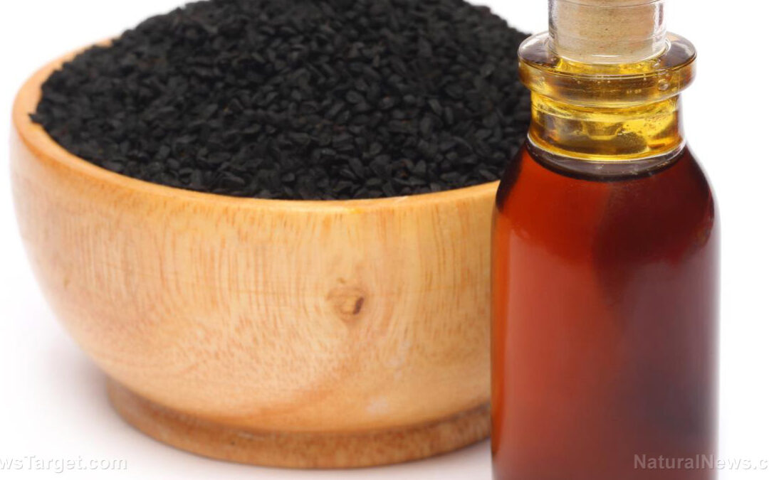 Nigella sativa (black seed) prevents covid-induced vascular damage, scientists conclude in published paper indexed by NIH