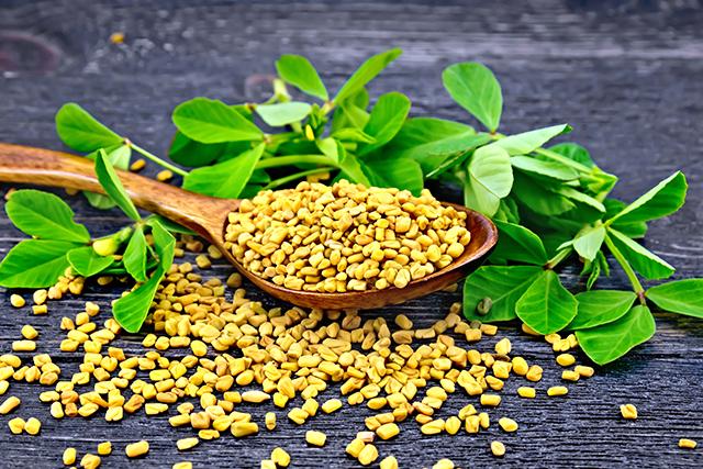 6 Impressive benefits of fenugreek, a versatile Mediterranean herb