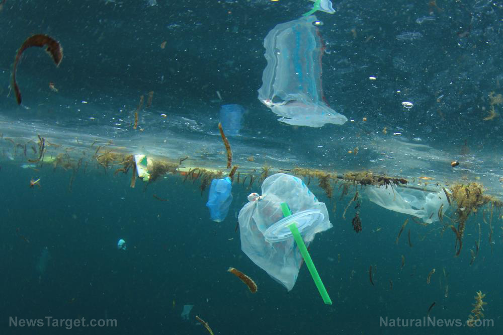 Nearly 1.6 billion disposable face masks flooded oceans in 2020