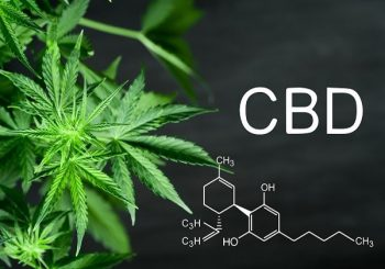 Antibiotic Resistance: How Cannabis Can Help